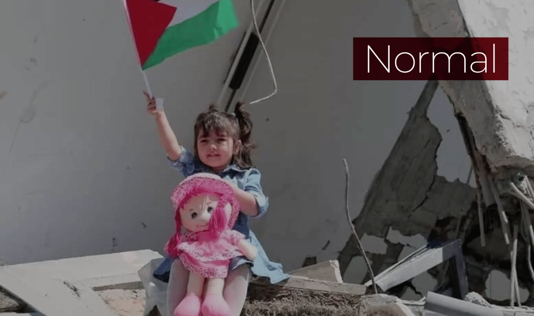 miniatura normal in palestine